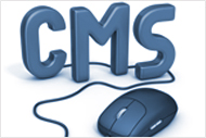 CUSTOM CONTENT MANAGEMENT